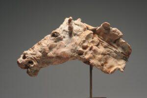 Hästhuvud (Terracotta)